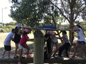 Year6Camp2017activity